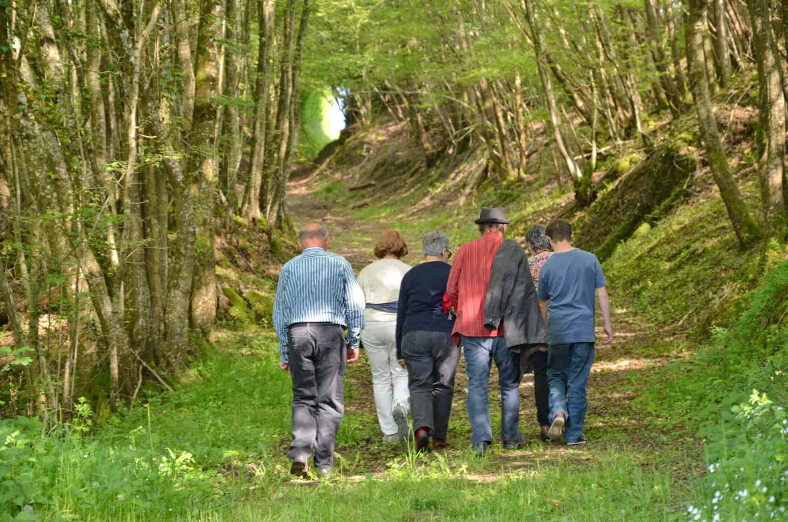Chemin de randonnée vers Villedieu-le-Château en forme de tunnel - gîte rural de Haute Forêt en Vallée du Loir