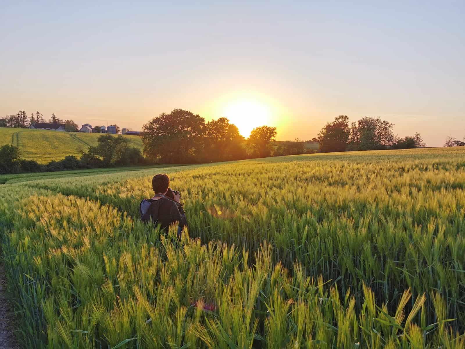 Photographe dans un champ d'orge au coucher du soleil