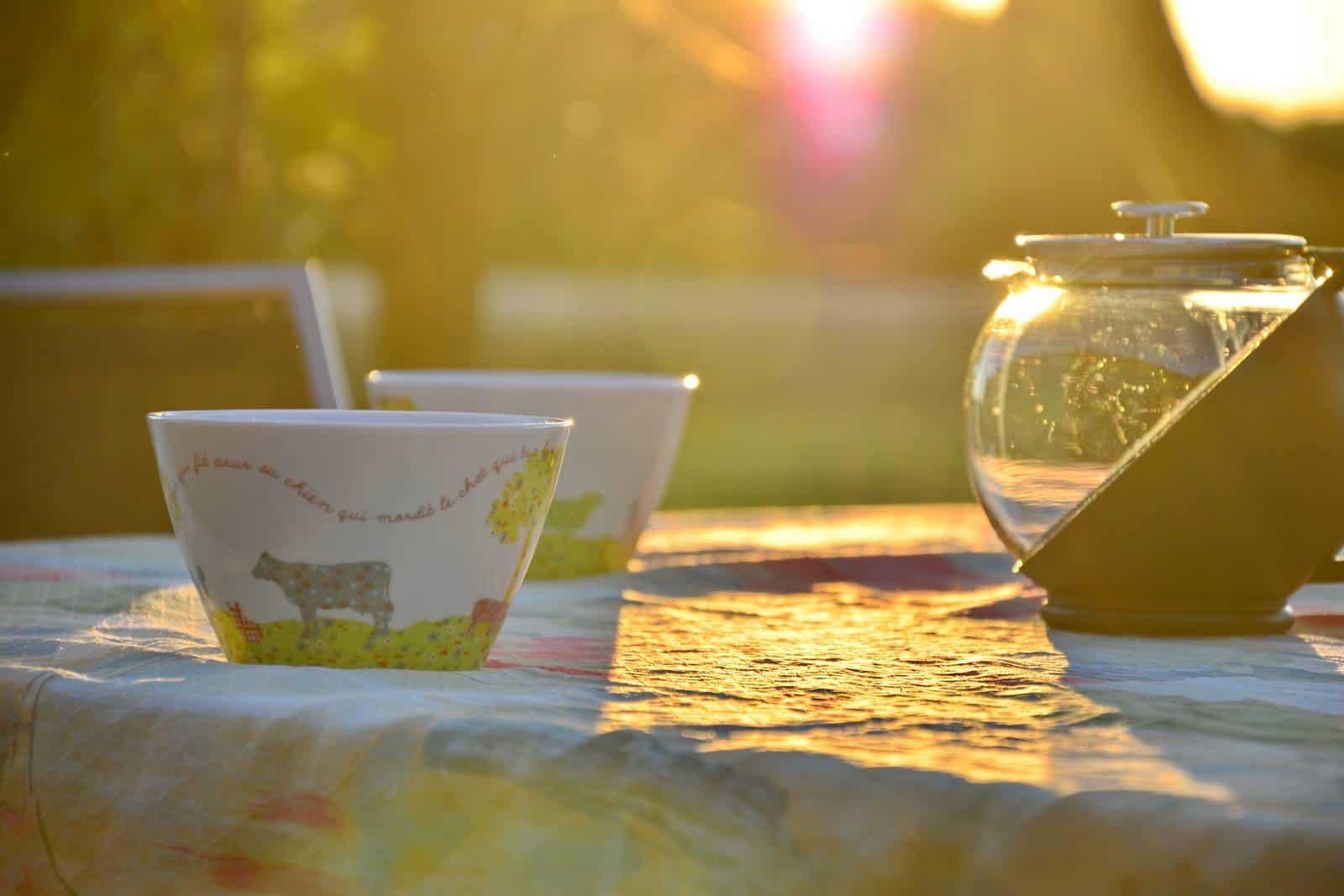 Un café ou un petit déjeuner au soleil - gîte rural de Haute Forêt en Vallée du Loir